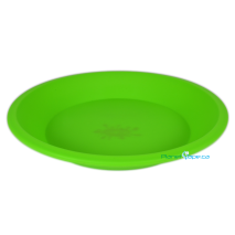NoGoo Goo 8 inch Plate Green